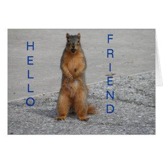 Squirrel With Nut, Hello Friend Card
