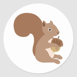 Squirrels Acorn Classic Round Sticker