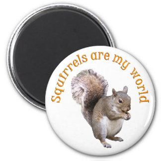 Squirrels are my World 6 Cm Round Magnet