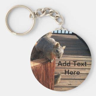 Squirrels Basic Round Button Key Ring
