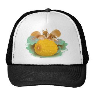 squirrels in the pumpkin patch cap