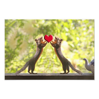 Squirrels with Heart Photo