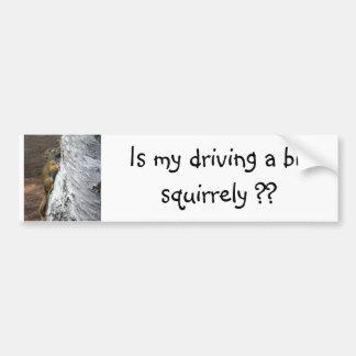 Squirrely Driver Bumper Sticker