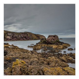 St Abbs Harbour, Scotland Poster