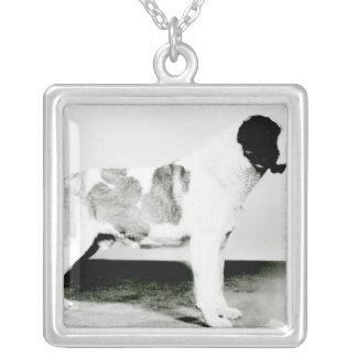 St. Bernard Dog Silver Plated Necklace