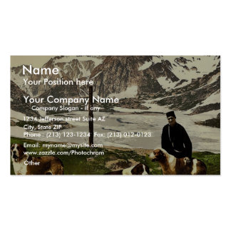 St. Bernard dogs, Valais, Alps of, Switzerland cla Business Cards