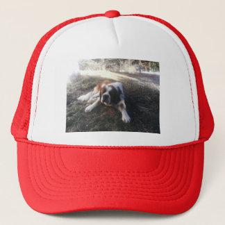 st Bernard hat
