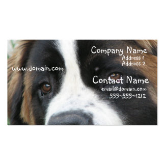 St Bernard Puppies Business Card