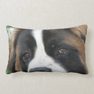 St Bernard Puppies Pillow