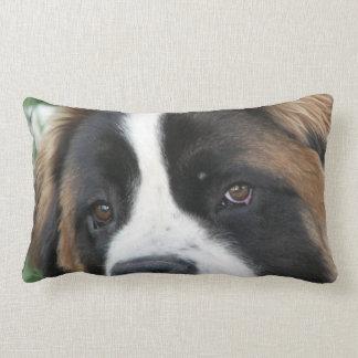St Bernard Puppies Pillow