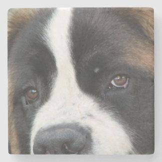 St Bernard Puppies Stone Coaster