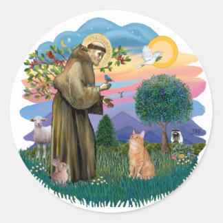 St Francis (ff) - Orange Tabby cat Classic Round Sticker