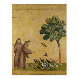 St. Francis of Assisi preaching to the birds Postcard