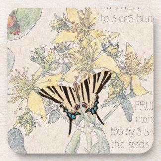 St Johns Wort Flowers Wildlife Butterfly Coaster