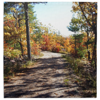 St Joseph Island Fall Path Napkin
