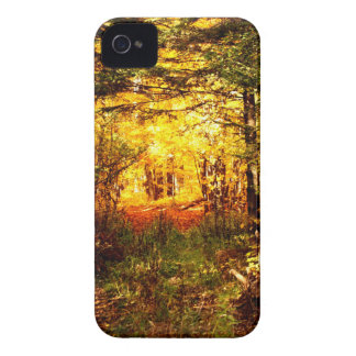 St Joseph Island Fall Tour Case-Mate iPhone 4 Cases