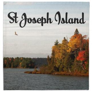 St Joseph Island lake view Napkin