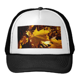 St Joseph Island Maple Leaf Cap