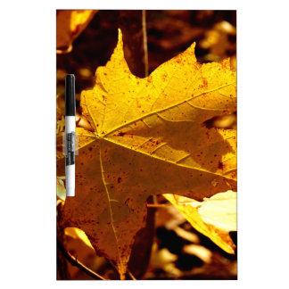 St Joseph Island Maple Leaf Dry Erase Board