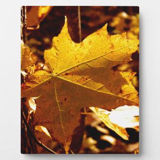 St Joseph Island Maple Leaf Plaque