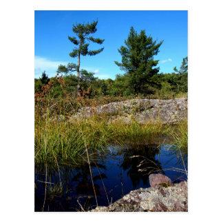 St Joseph Island northern Ontario Postcard