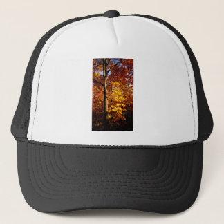 St Joseph Island Sugar Maples Cap