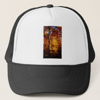 St Joseph Island Sugar Maples Trucker Hat