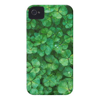St Patrick lucky clovers iPhone 4 Case-Mate Cases