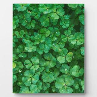 St Patrick lucky clovers Plaque