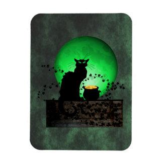St. Patrick's Chat Noir Rectangular Photo Magnet