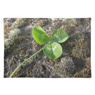 St. Patrick's Day background . Clover on the rock Placemat