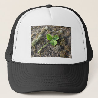 St. Patrick's Day background . Clover on the rock Trucker Hat