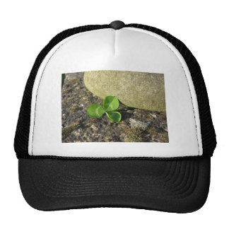 St. Patrick's Day background with clover by stone Cap