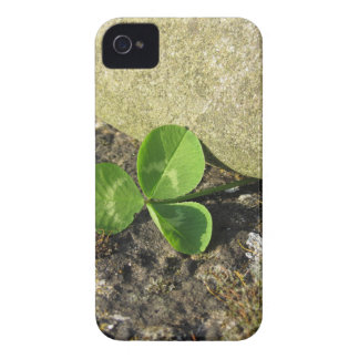 St. Patrick's Day background with clover by stone iPhone 4 Covers
