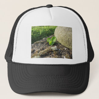 St. Patrick's Day background with clover by stone Trucker Hat