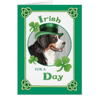 St. Patrick's Day Berner Card