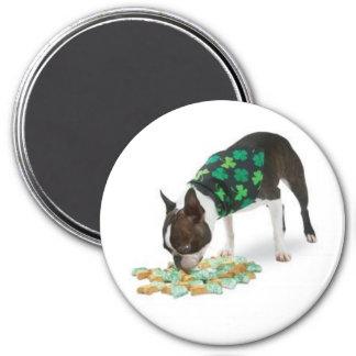 St. Patrick's Day Boston Terrier Magnet