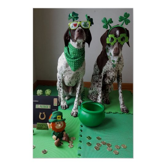 St. Patrick's Day Dogs Party Value Poster