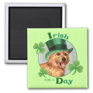St. Patrick's Day Norwich Terrier Magnet
