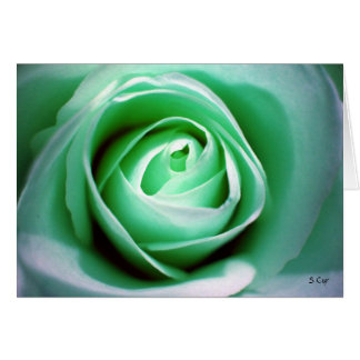 St. Patrick's Day, S Cyr Greeting Card