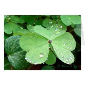 St Patrick's Day Shamrock Photo Card