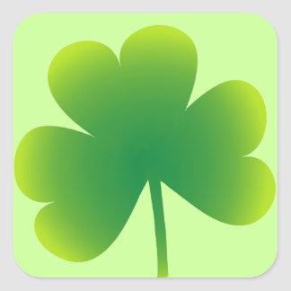 St. Patrick's Day Shamrock Square Sticker