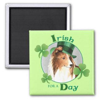 St. Patrick's Day Sheltie Magnet