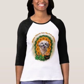 St Patricks - Pot of Gold - ShihPoo - Maggie T-Shirt