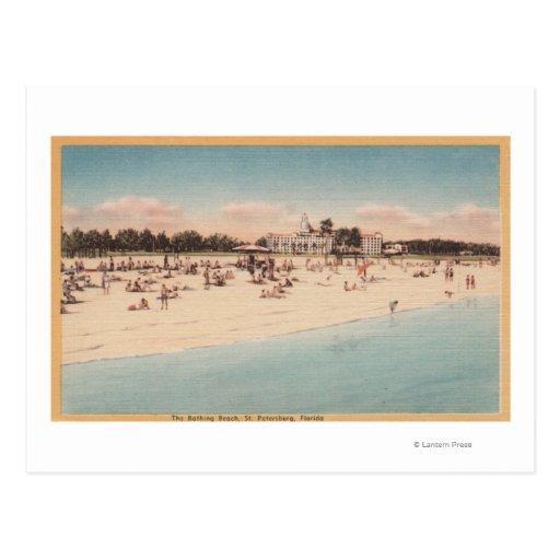 St. Petersburg, FL - Waterfront View of Post Card