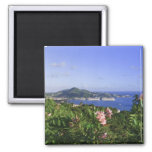 St. Thomas, US Virgin Islands. Charlotte Square Magnet