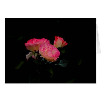 St. Valentine's Day Happy Valentine's Day roses Greeting Card