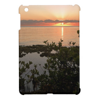 Stability at Key Biscayne iPad Mini Cases