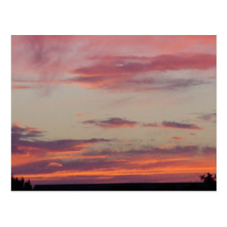 Stacey's Texas Sunset Postcard
