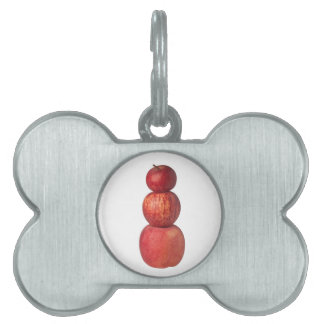 Stack of apples pet name tag